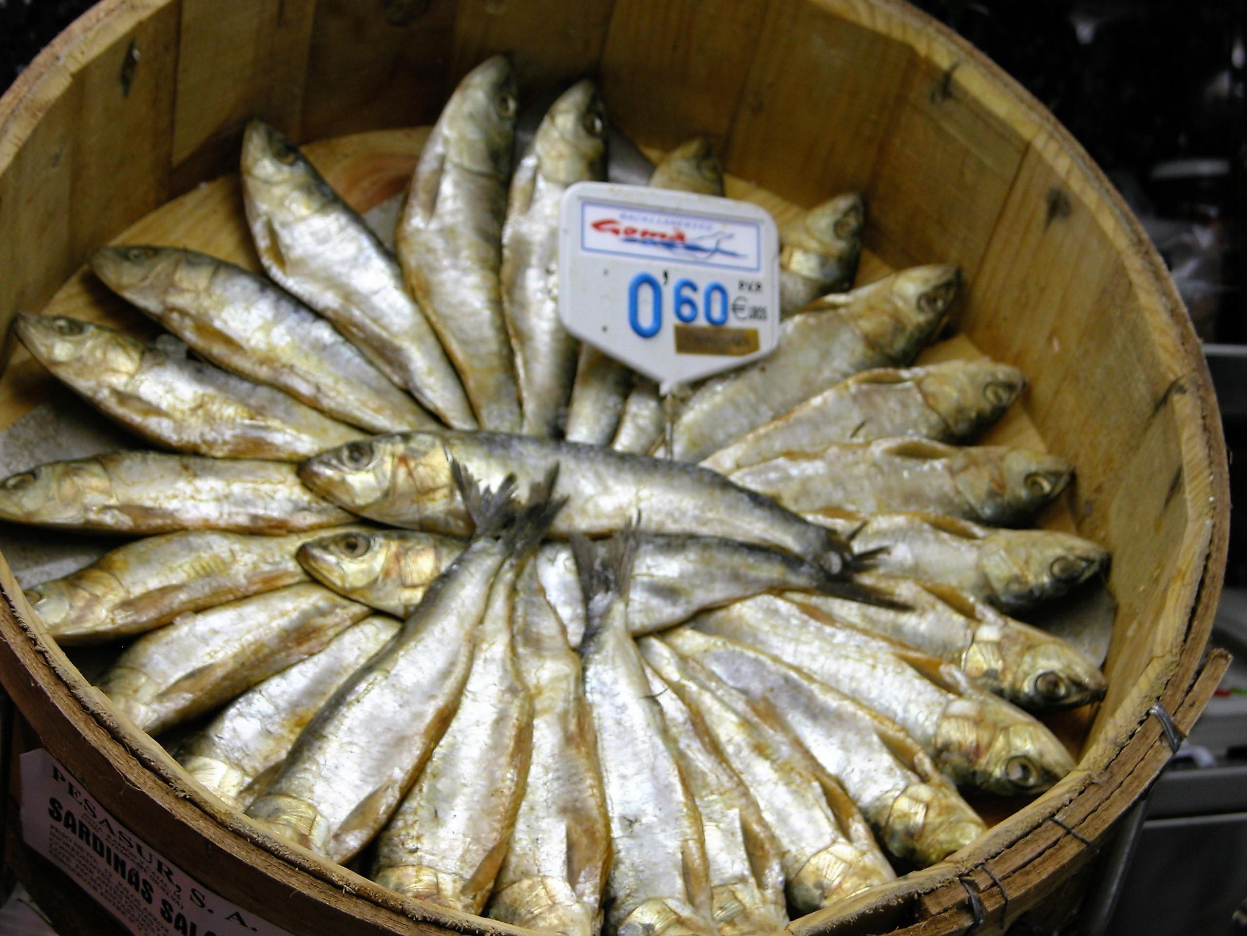Cubo de sardinas